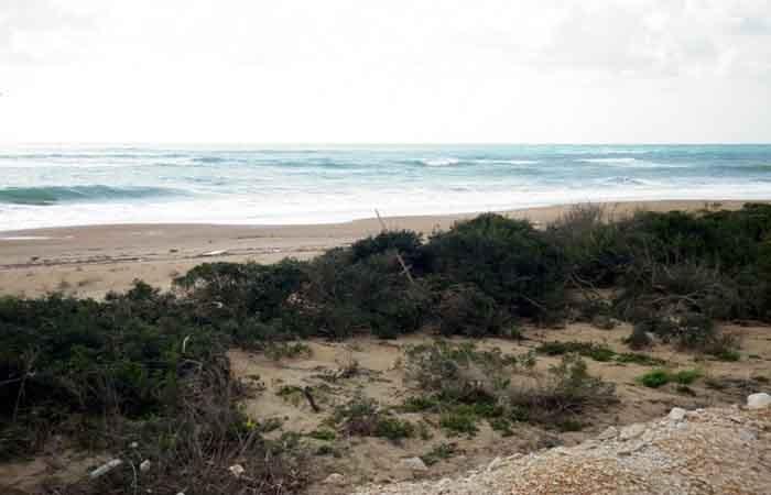 Παραθαλάσσια έκταση στη Χρυσή Ακτή