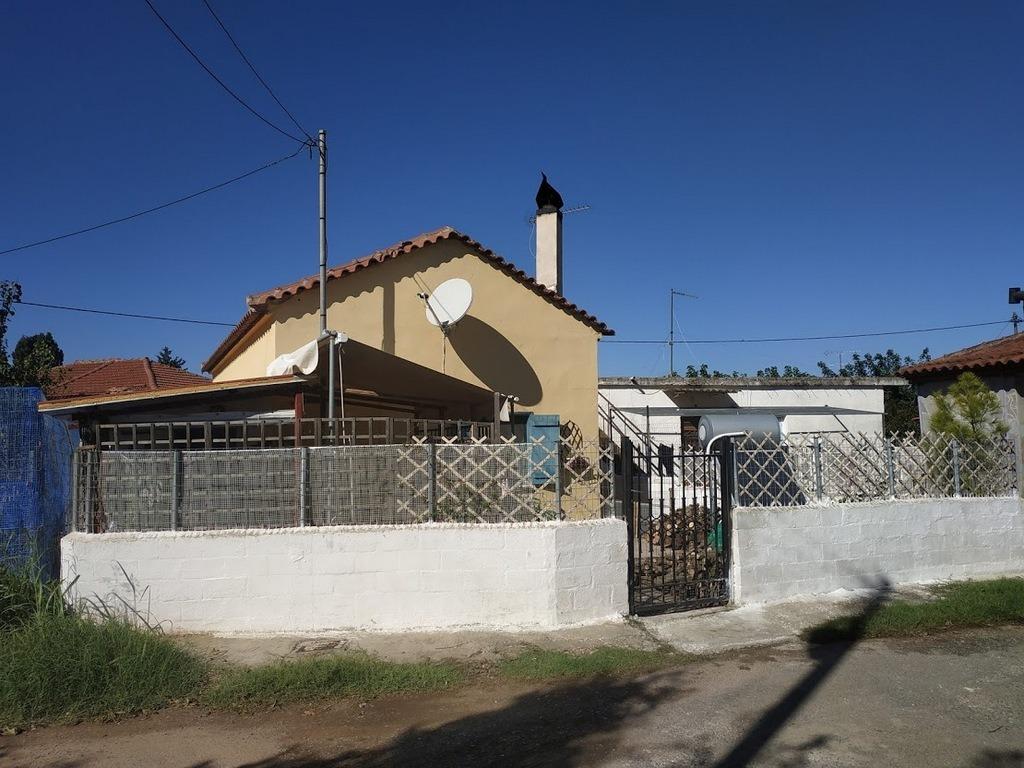 Detached house for sale in Elaiofyto Gialova Messinia
